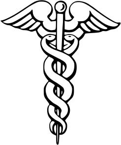 Nesmy : Recherche de médécin(s) généraliste(s)