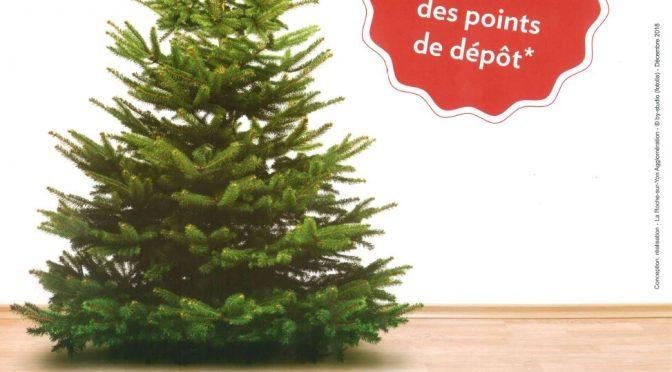 Archive : Opération de recyclage des sapins de Noël