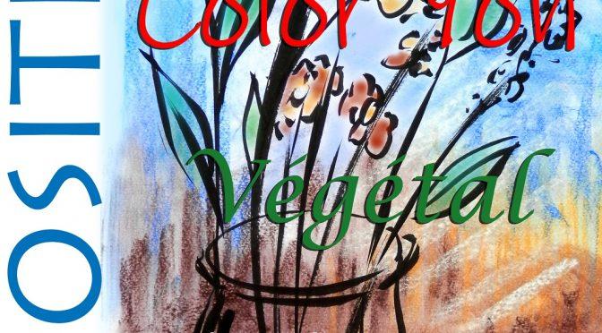 Archives : Expo Color'Yon Médiathèque